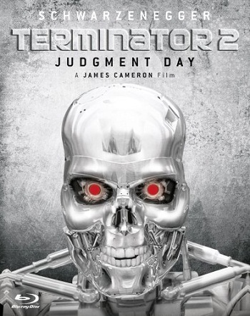 Terminator 2 Judgment Day (1991) 480p Dual Audio