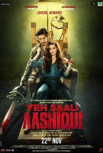 Yeh Saali Aashiqui (2019) 720p Hindi